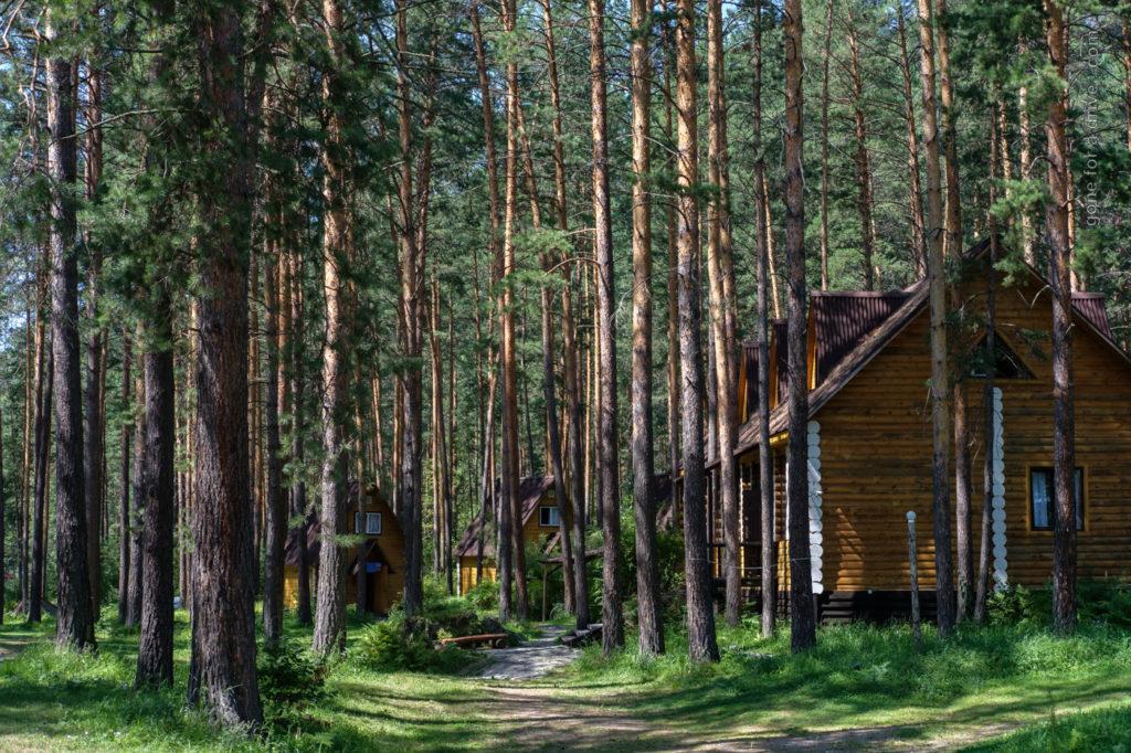 Wälder und Camping-Hütten, Altai, Russland