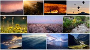 Auswahl der Bilder im Wandbilder-Shop